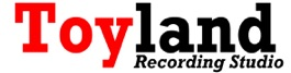 Branded Blog Content – Toyland Recording Studio – Awards and Best Of 2014 Accolades